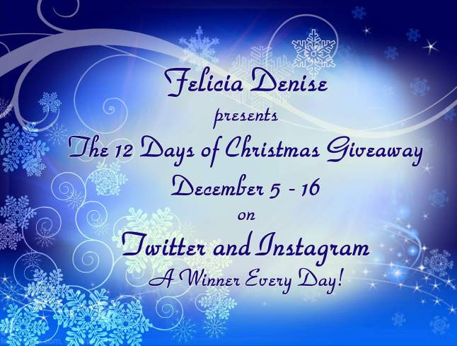 The 12 Days of Christmas Giveaway