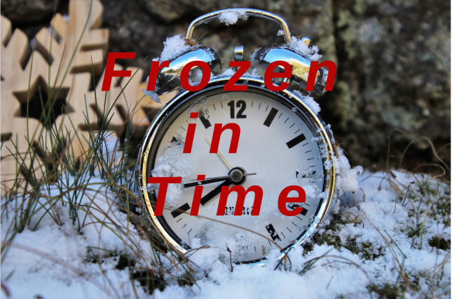 Frozen in Time banner