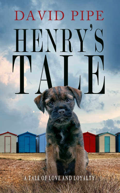 Henry's Tale cover