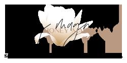 HonMag Badge