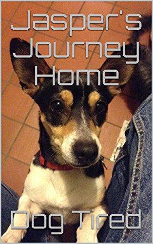 Jasper's Journey Home cover