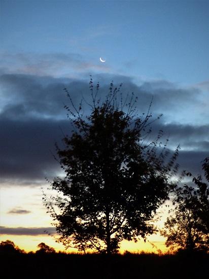 crescent moon writephoto