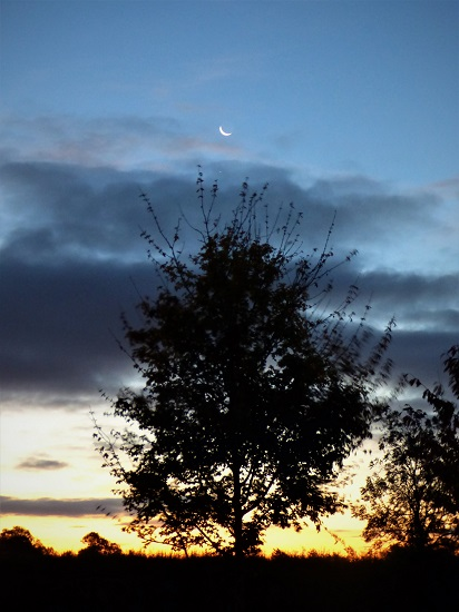 crescent moon writephoto